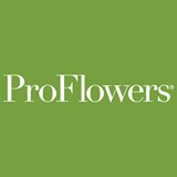 15% off Birthday Flowers & Gifts at ProFlowers